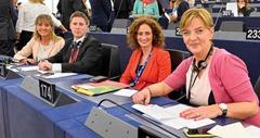 Plenary session week 27 2014